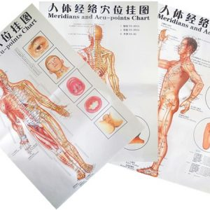 Acupuncture Wall Chart