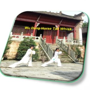 Wudang Horse Tail Whisk